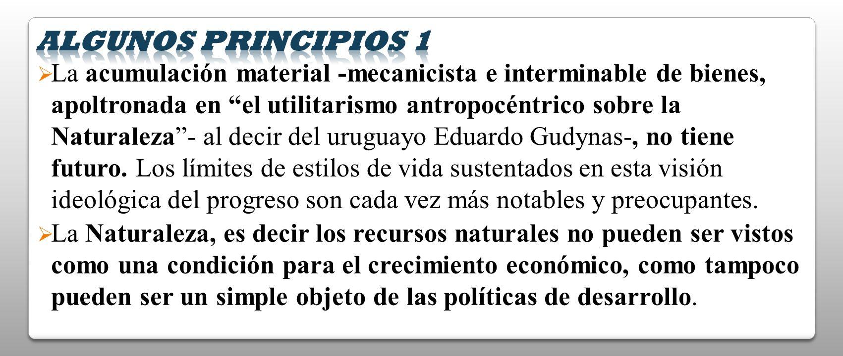 La acumulación material -mecanicista e interminable de bienes, apoltronada en el utilitarismo antropocéntrico sobre la Naturaleza- al decir del urugua