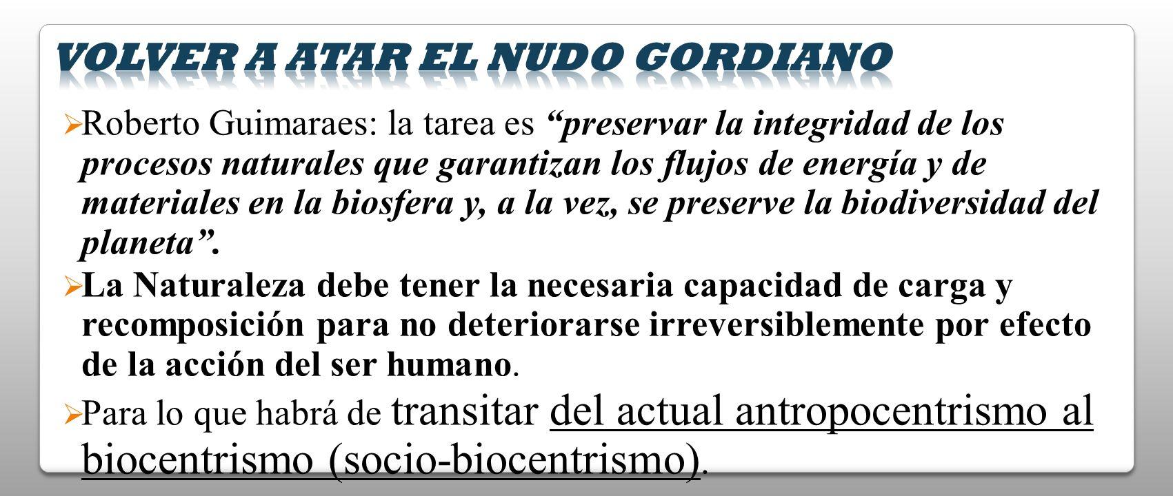 Roberto Guimaraes: la tarea es preservar la integridad de los procesos naturales que garantizan los flujos de energía y de materiales en la biosfera y