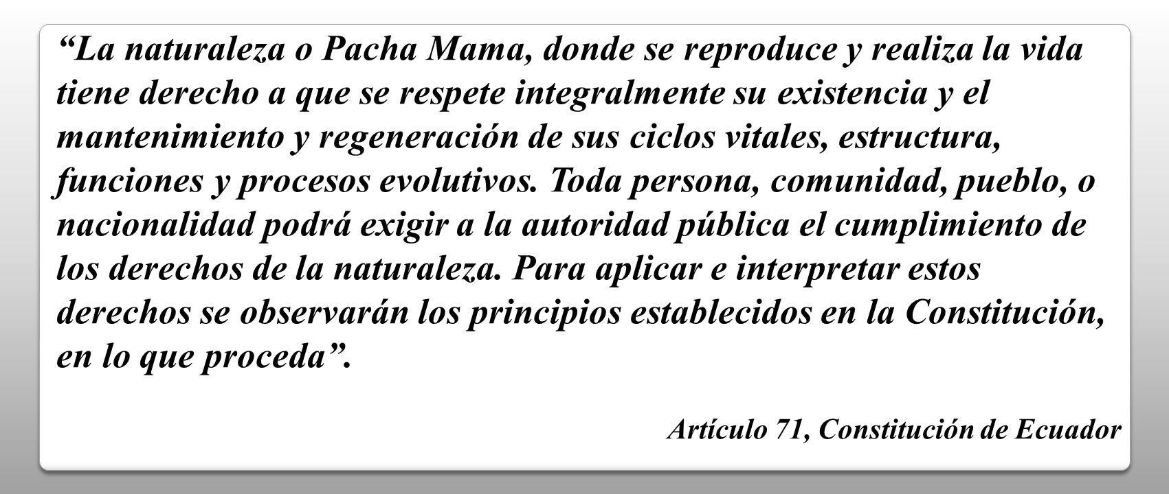 La naturaleza o Pacha Mama, donde se reproduce y realiza la vida tiene derecho a que se respete integralmente su existencia y el mantenimiento y regen