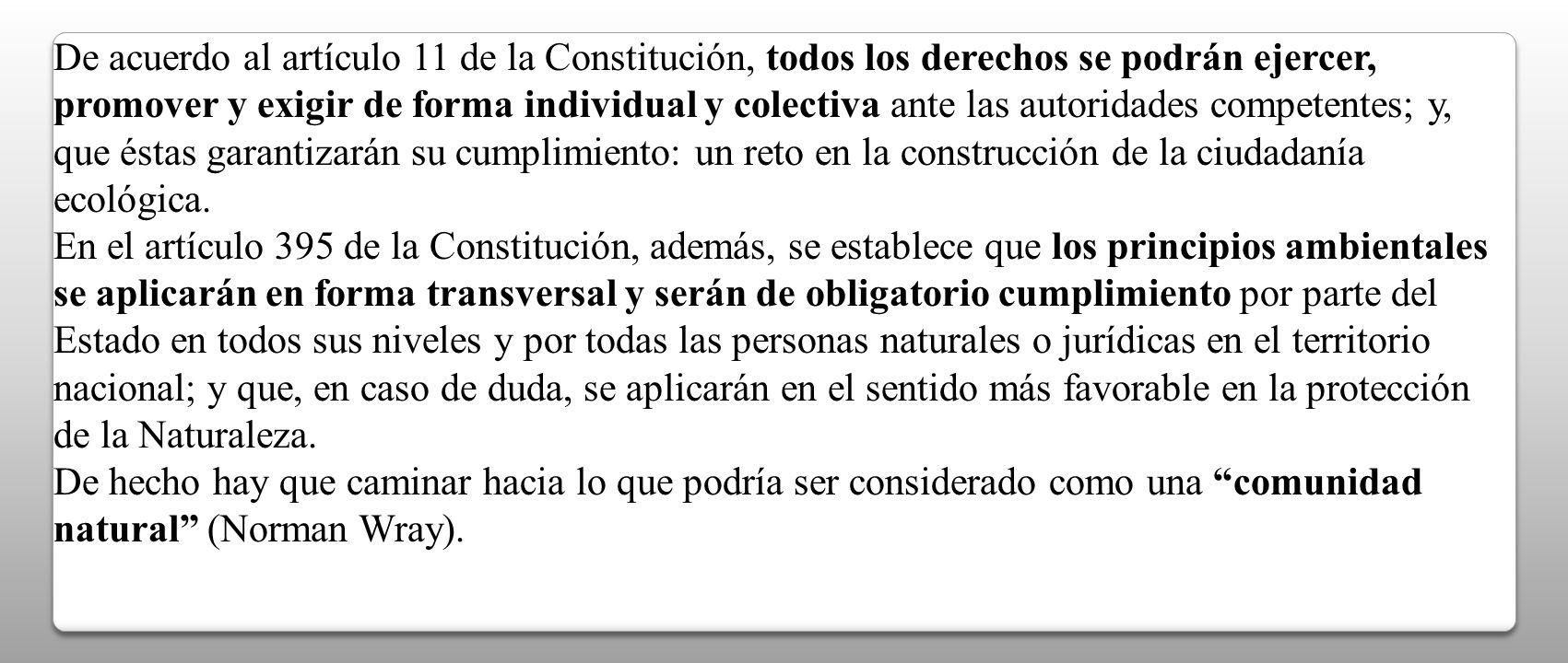 De acuerdo al artículo 11 de la Constitución, todos los derechos se podrán ejercer, promover y exigir de forma individual y colectiva ante las autorid