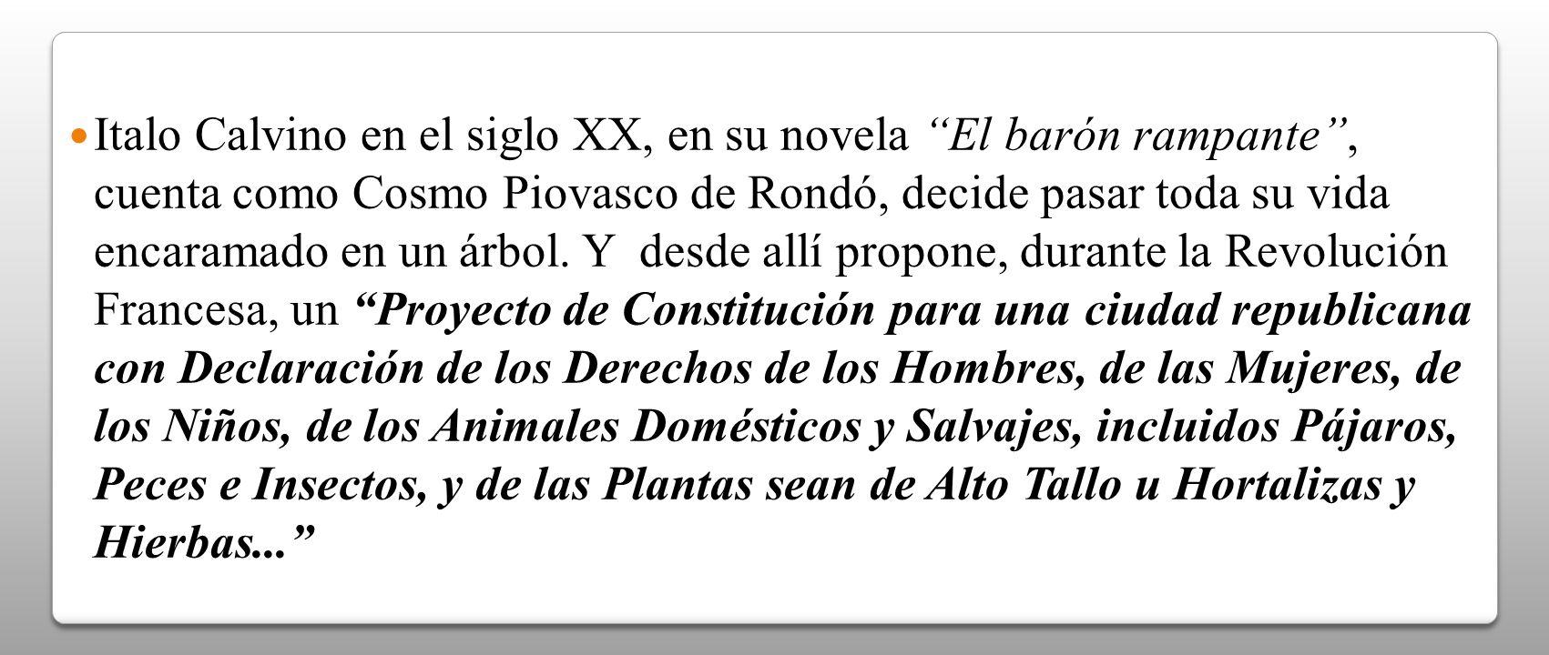 Italo Calvino en el siglo XX, en su novela El barón rampante, cuenta como Cosmo Piovasco de Rondó, decide pasar toda su vida encaramado en un árbol. Y