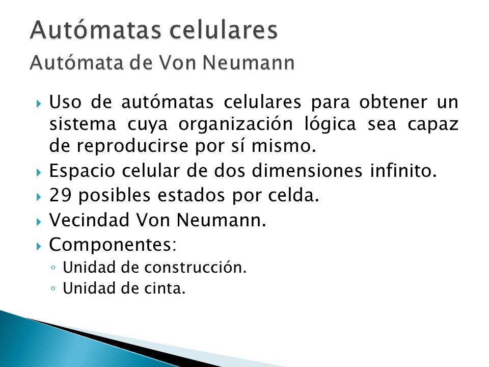 Uso de autómatas celulares para obtener un sistema cuya organización lógica sea capaz de reproducirse por sí mismo. Espacio celular de dos dimensiones