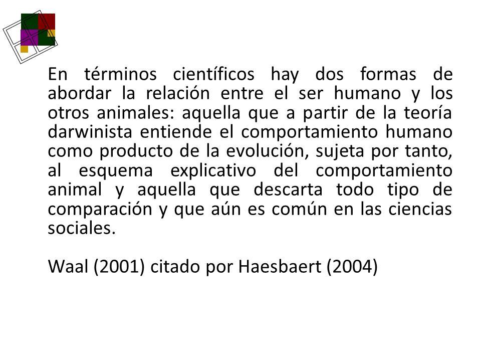 En términos científicos hay dos formas de abordar la relación entre el ser humano y los otros animales: aquella que a partir de la teoría darwinista e