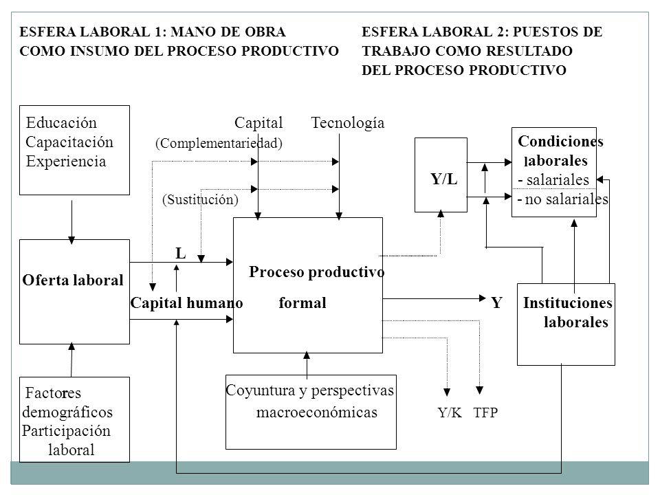 Coyuntura y perspectivas demográficos macroeconómicas Y/K TFP Participación laboral
