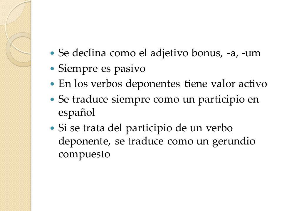 Se declina como el adjetivo bonus, -a, -um Siempre es pasivo En los verbos deponentes tiene valor activo Se traduce siempre como un participio en espa