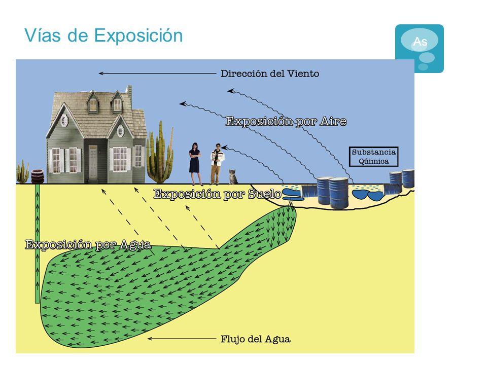 Fuentes de Exposición al Arsénico Fuentes de exposicion: Aire Agua Comida Se encuentra ampliamente en el medio ambiente: Pesticidas Industria Minerales/metales As