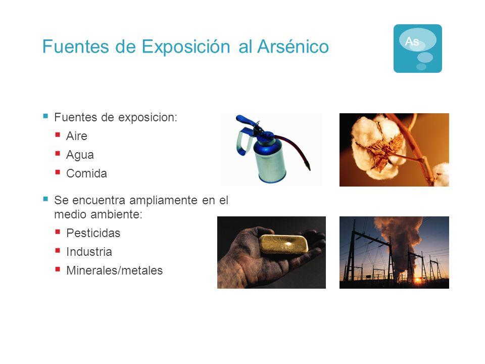 Vías de Exposición al Arsénico Arsénico Agua Forma Soluble en Agua Comida Forma Natural Polvo Forma Mixta As