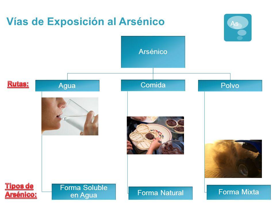 El Arsénico Ocurre Naturalmente en Nuestras Fuentes de Agua La vía de exposición al arsénico mas común es a través del agua potable As Niveles Máximos Permisibles: EE.UU.= 10 ppb México 25 ppb