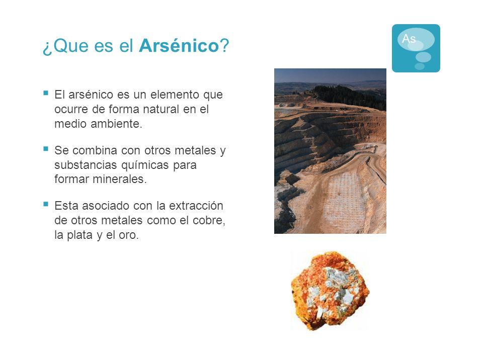 La Importancia de Estudiar el Arsénico El arsénico se encuentra por todos lados.