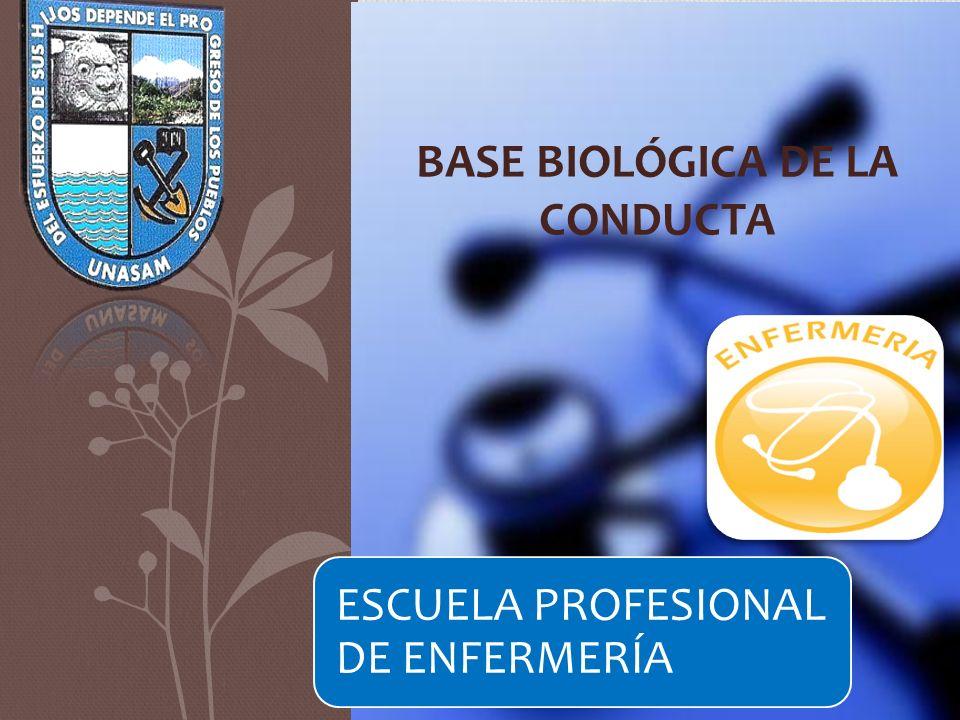 ESCUELA PROFESIONAL DE ENFERMERÍA BASE BIOLÓGICA DE LA CONDUCTA