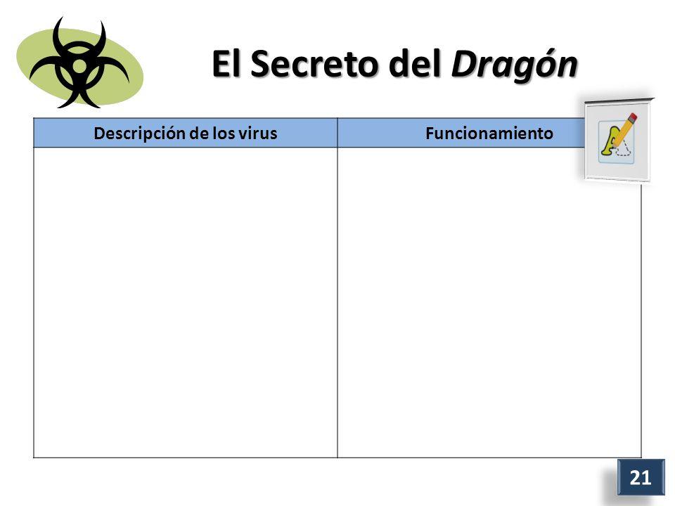 El Secreto del Dragón Descripción de los virusFuncionamiento 21