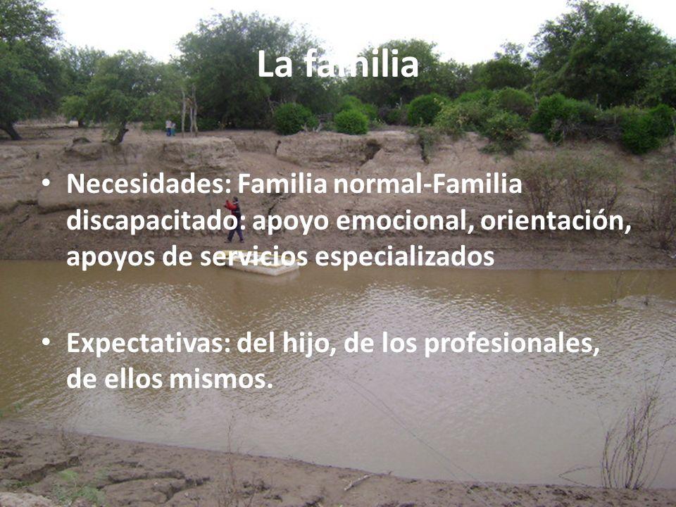 La familia Necesidades: Familia normal-Familia discapacitado: apoyo emocional, orientación, apoyos de servicios especializados Expectativas: del hijo,