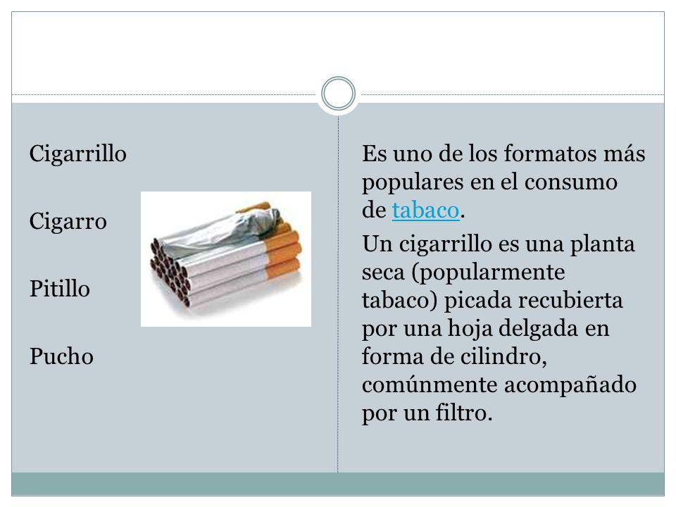 Cigarrillo Cigarro Pitillo Pucho Es uno de los formatos más populares en el consumo de tabaco.tabaco Un cigarrillo es una planta seca (popularmente ta