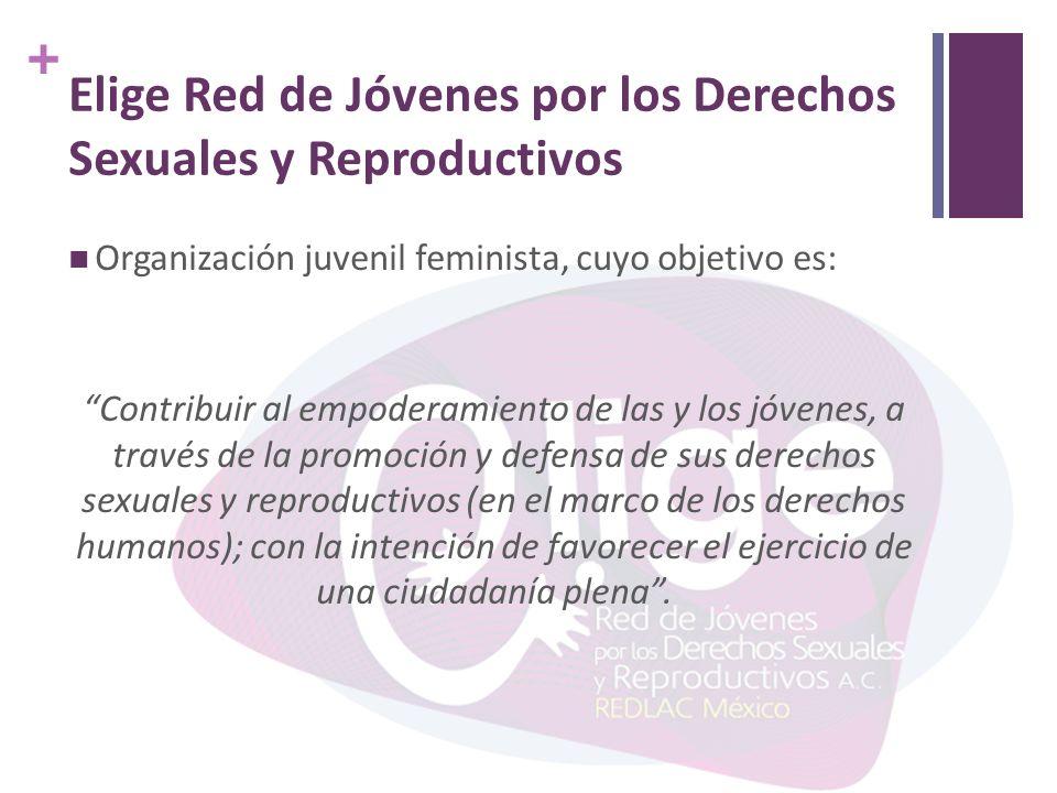 + Elige Red de Jóvenes por los Derechos Sexuales y Reproductivos Organización juvenil feminista, cuyo objetivo es: Contribuir al empoderamiento de las y los jóvenes, a través de la promoción y defensa de sus derechos sexuales y reproductivos (en el marco de los derechos humanos); con la intención de favorecer el ejercicio de una ciudadanía plena.