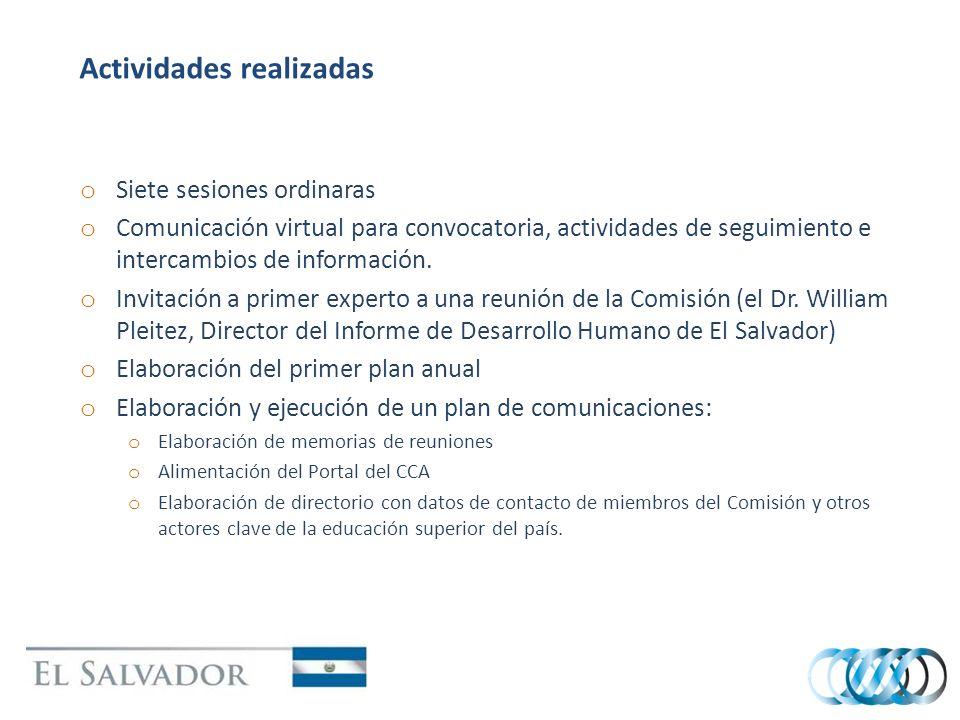 Actividades realizadas o Siete sesiones ordinaras o Comunicación virtual para convocatoria, actividades de seguimiento e intercambios de información.