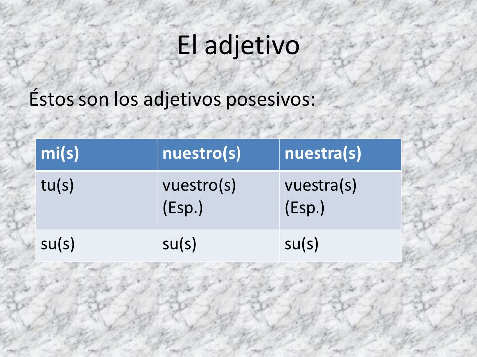 El adjetivo Éstos son los adjetivos posesivos: mi(s)nuestro(s)nuestra(s) tu(s)vuestro(s) (Esp.) vuestra(s) (Esp.) su(s)