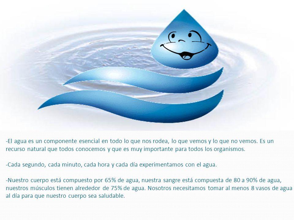 -El agua es un componente esencial en todo lo que nos rodea, lo que vemos y lo que no vemos. Es un recurso natural que todos conocemos y que es muy im