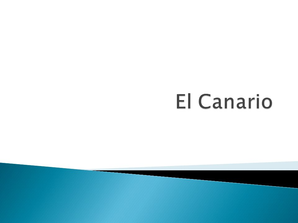 Broadcasting -standard Spanish Local channels with Canarian presenters.