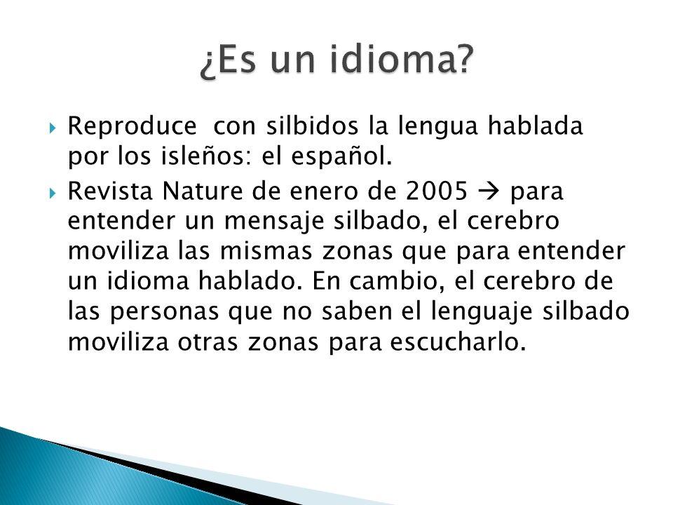 Reproduce con silbidos la lengua hablada por los isleños: el español. Revista Nature de enero de 2005 para entender un mensaje silbado, el cerebro mov