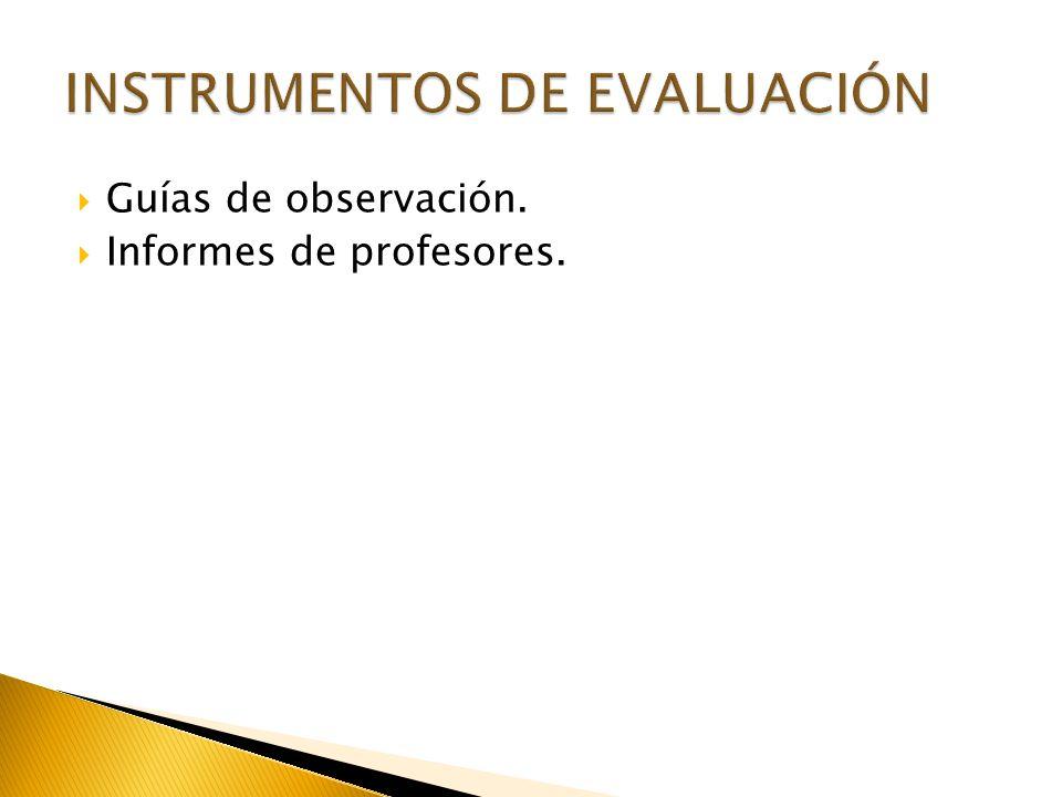 Guías de observación. Informes de profesores.
