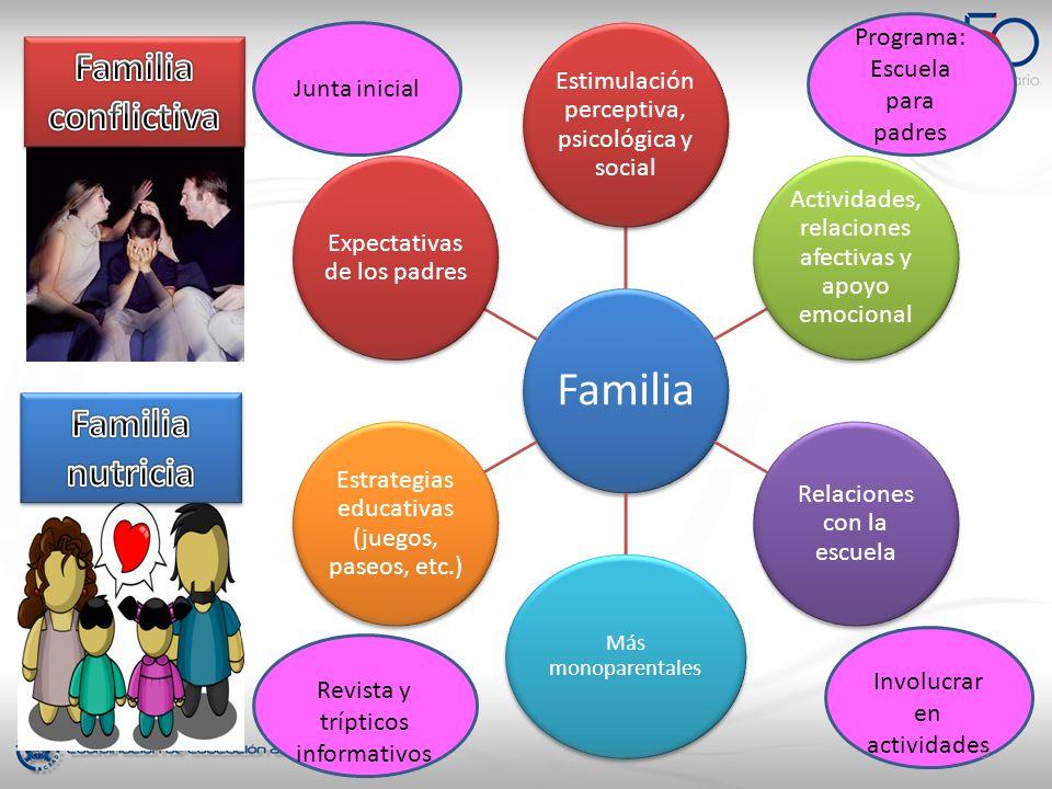 Familia Estimulación perceptiva, psicológica y social Actividades, relaciones afectivas y apoyo emocional Relaciones con la escuela Más monoparentales