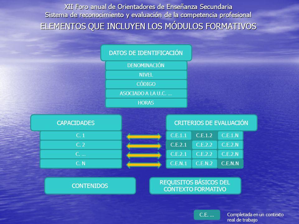 ELEMENTOS QUE INCLUYEN LOS MÓDULOS FORMATIVOS DATOS DE IDENTIFICACIÓN DENOMINACIÓN NIVEL CÓDIGO CAPACIDADESCRITERIOS DE EVALUACIÓN C. 1 C. 2 C. … C. N