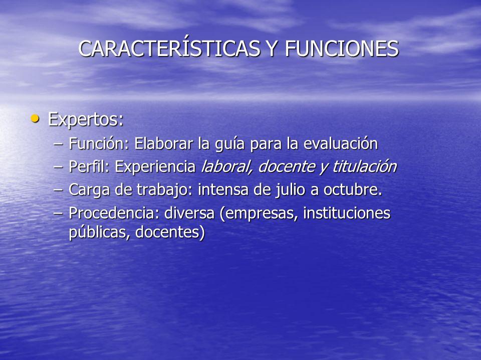 CARACTERÍSTICAS Y FUNCIONES Expertos: Expertos: –Función: Elaborar la guía para la evaluación –Perfil: Experiencia laboral, docente y titulación –Carg