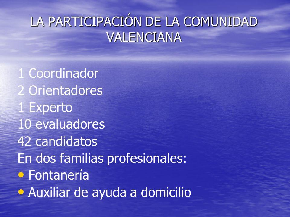 LA PARTICIPACIÓN DE LA COMUNIDAD VALENCIANA 1 Coordinador 2 Orientadores 1 Experto 10 evaluadores 42 candidatos En dos familias profesionales: Fontane