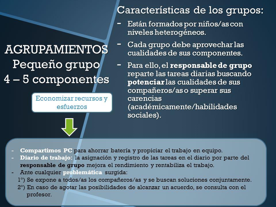 AGRUPAMIENTOS Pequeño grupo 4 – 5 componentes Características de los grupos: - Están formados por niños/as con niveles heterogéneos. - Cada grupo debe