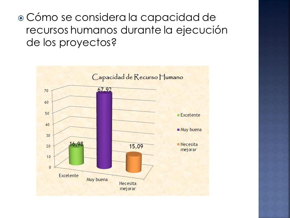 Cómo se considera la capacidad de recursos humanos durante la ejecución de los proyectos?