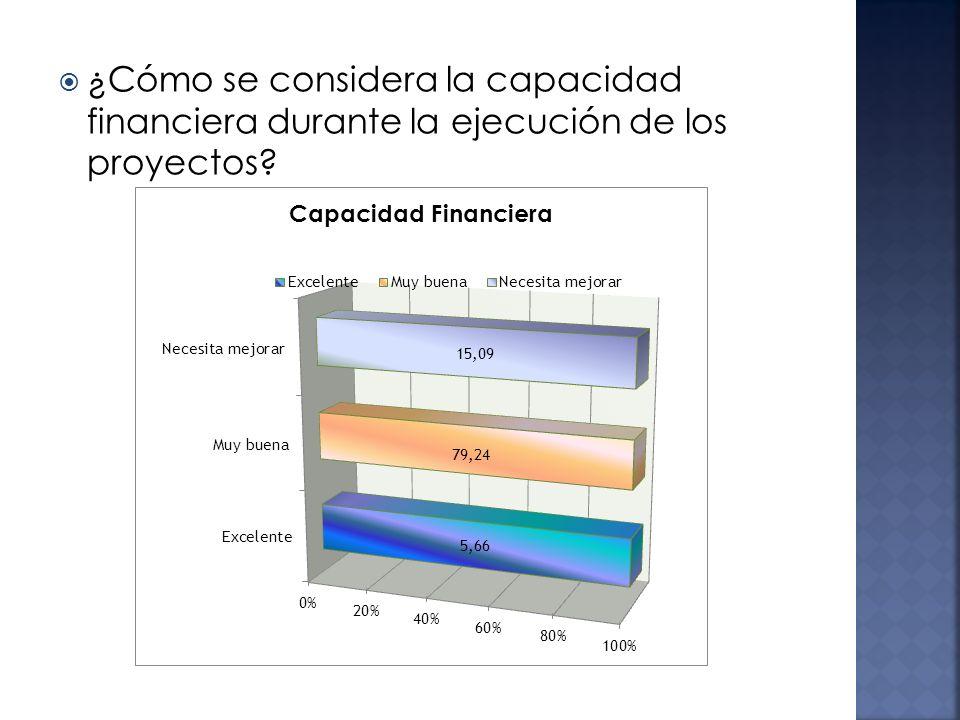 ¿Cómo se considera la capacidad financiera durante la ejecución de los proyectos?
