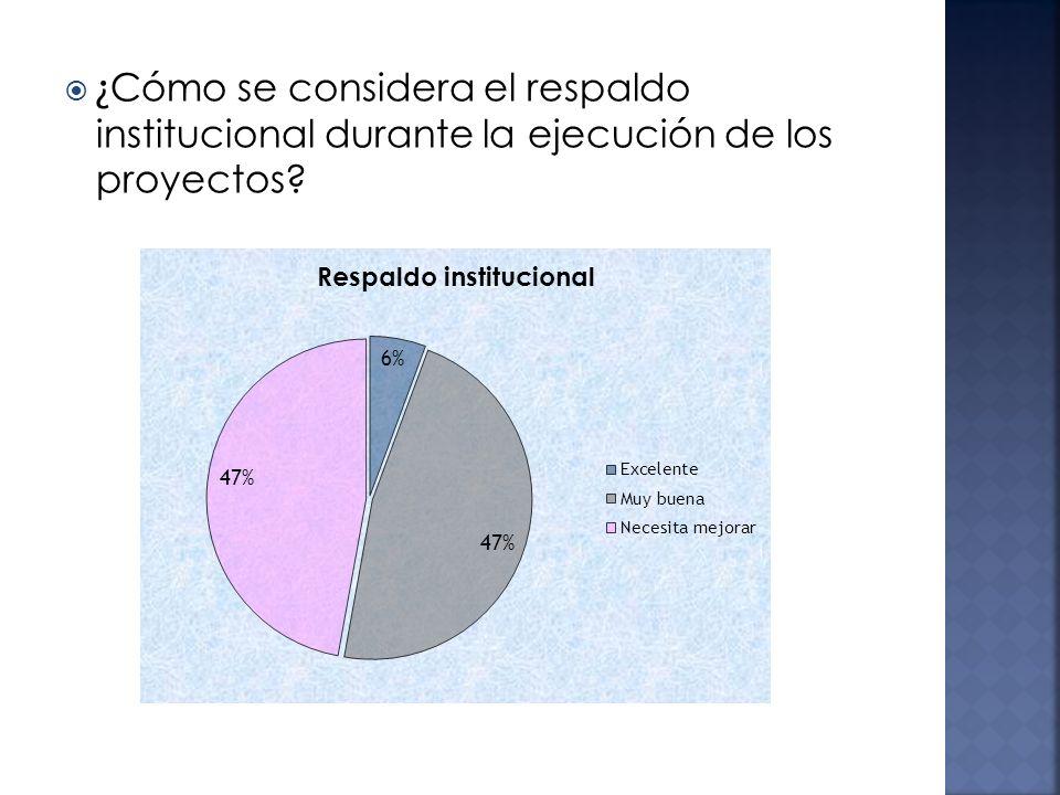 ¿ Cómo se considera el respaldo institucional durante la ejecución de los proyectos?