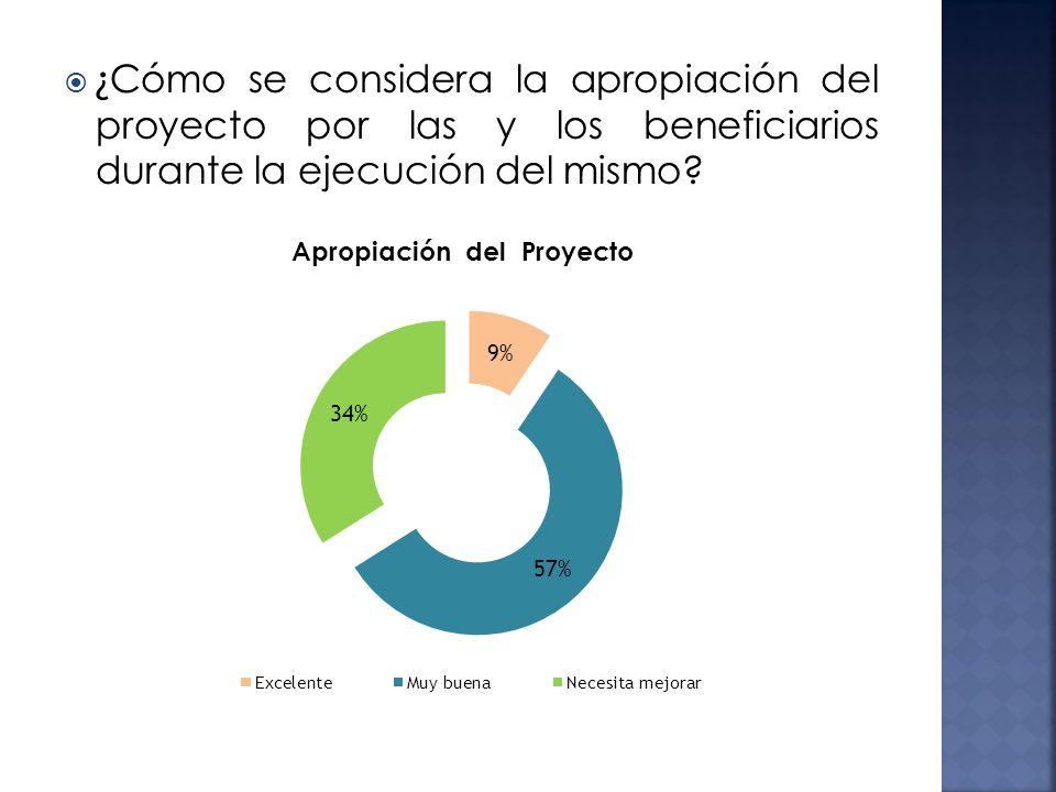 ¿ Cómo se considera la apropiación del proyecto por las y los beneficiarios durante la ejecución del mismo?