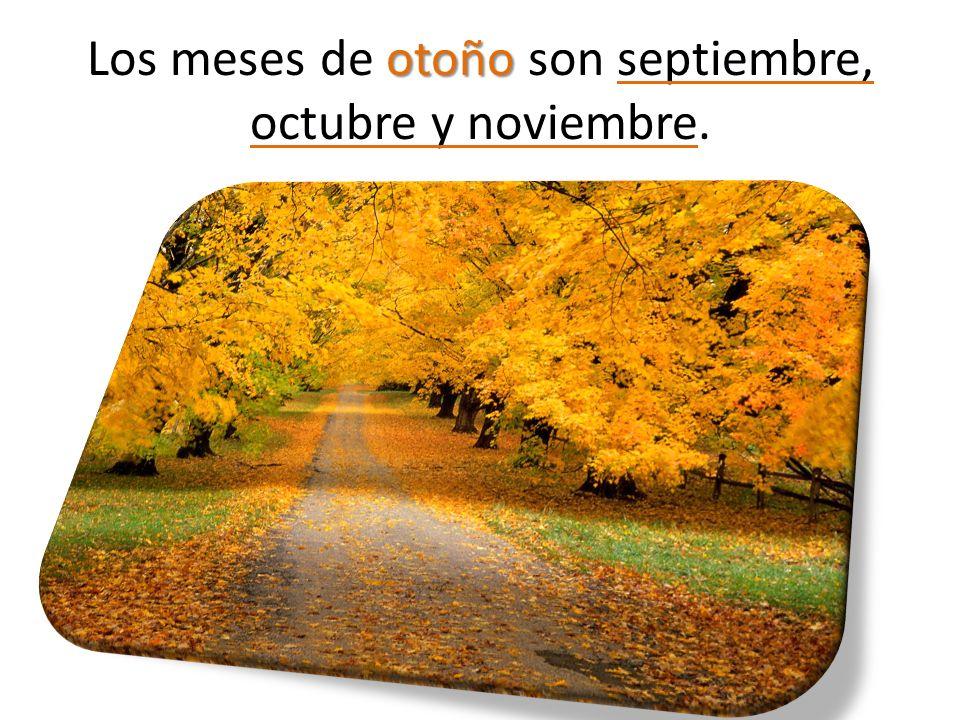 otoño Los meses de otoño son septiembre, octubre y noviembre.