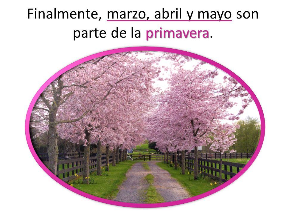 primavera Finalmente, marzo, abril y mayo son parte de la primavera.