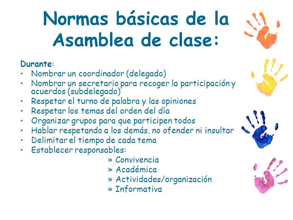 Normas básicas de la Asamblea de clase: Durante: Nombrar un coordinador (delegado) Nombrar un secretario para recoger la participación y acuerdos (sub