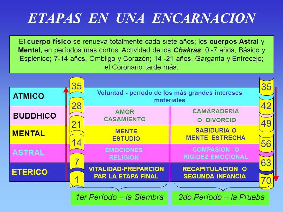 LOS CHAKRAS SISTEMA NERVIOSO ORGANOS SEXUALES SANGRE CEREBRO ABDOMEN PRANA CUERPO FISICO KUNDALINI EMOCIONES ELEVADAS CUERPO ASTRAL EMOCIONES INFERIOR