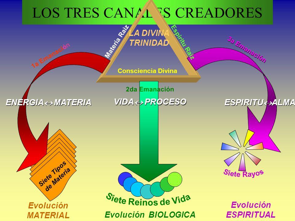 LOS TRES CANALES CREADORES Consciencia Divina Materia Raiz 1a Emanación 3a Emanación 2da Emanación VIDA PROCESO ENERGIA MATERIAESPIRITUALMA Siete Tipos de Materia Evolución MATERIAL Evolución ESPIRITUAL Evolución BIOLOGICA LA DIVINA TRINIDAD Espiritu Raiz