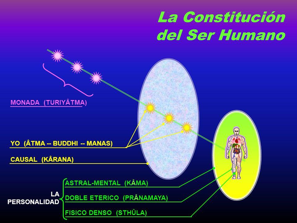 FISICO DENSO (STHÛLA) DOBLE ETERICO (PRÂNAMAYA) ASTRAL-MENTAL (KÂMA) CAUSAL (KÂRANA) YO (ÂTMA -- BUDDHI -- MANAS) LA PERSONALIDAD La Constitución del Ser Humano MONADA (TURIYÂTMA)