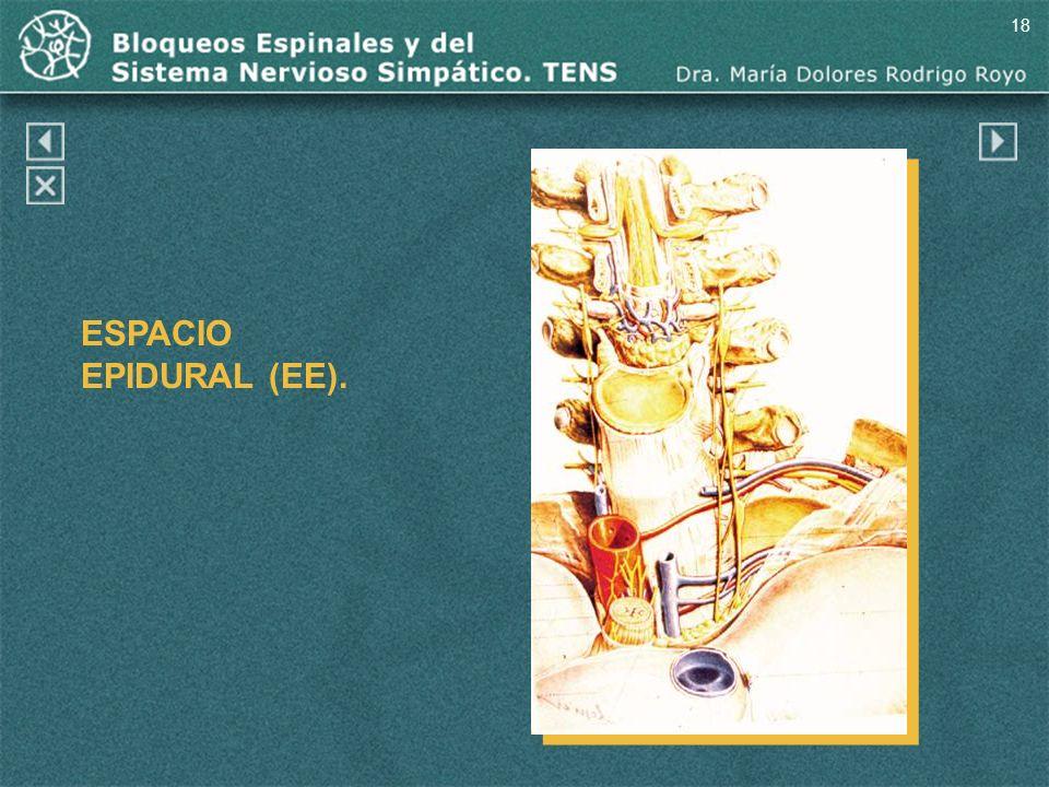 18 ESPACIO EPIDURAL (EE).
