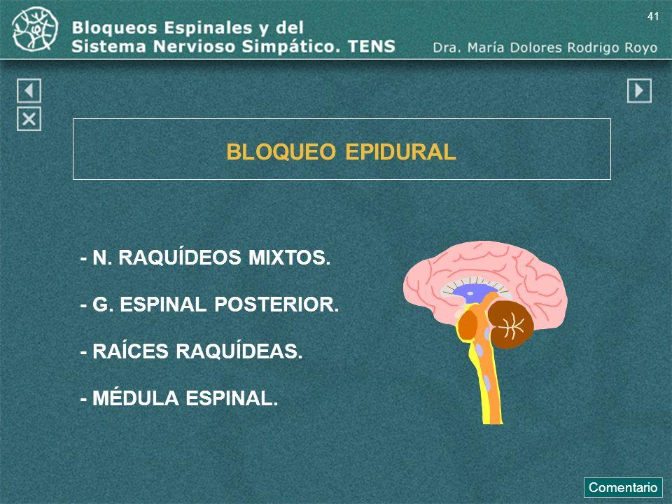BLOQUEO EPIDURAL - N. RAQUÍDEOS MIXTOS. - G. ESPINAL POSTERIOR. - RAÍCES RAQUÍDEAS. - MÉDULA ESPINAL. Comentario 41