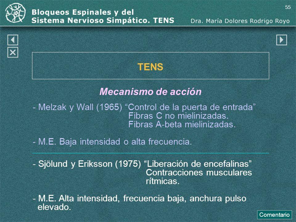 - Melzak y Wall (1965) Control de la puerta de entrada Fibras C no mielinizadas. Fibras A-beta mielinizadas. TENS Mecanismo de acción - M.E. Baja inte