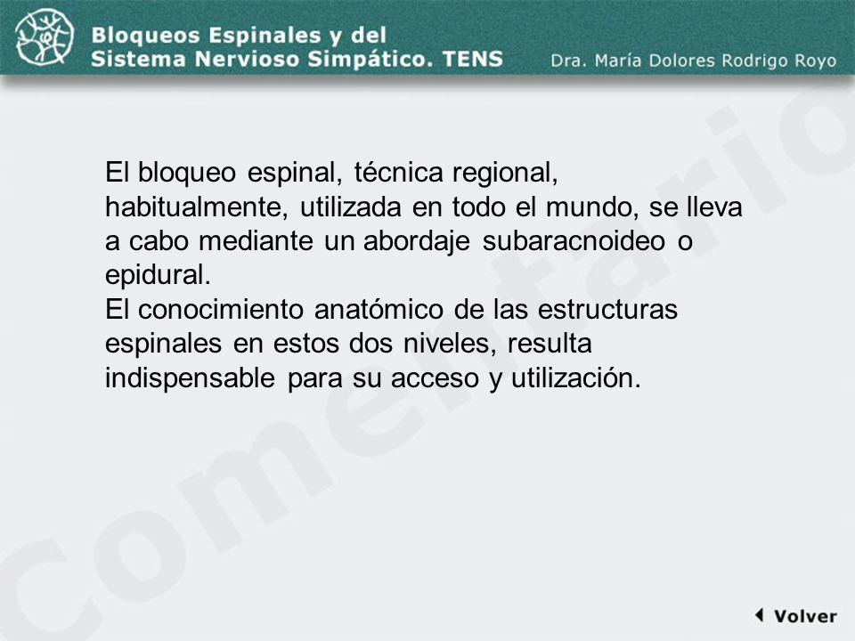 Comentario a la diapo11 El bloqueo espinal, técnica regional, habitualmente, utilizada en todo el mundo, se lleva a cabo mediante un abordaje subaracn