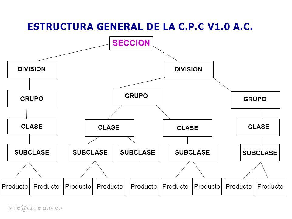 ESTRUCTURA GENERAL DE LA C.P.C V1.0 A.C. SECCION GRUPO CLASE DIVISION GRUPO CLASE SUBCLASE Producto snie@dane.gov.co