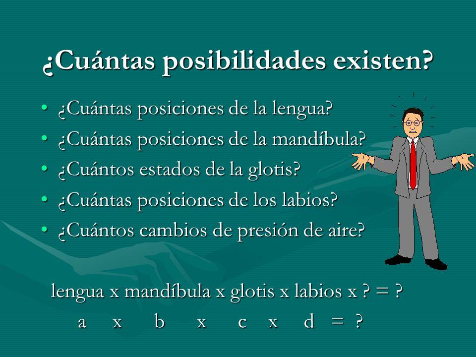 ¿Cuántas posibilidades existen. ¿Cuántas posiciones de la lengua ¿Cuántas posiciones de la lengua.