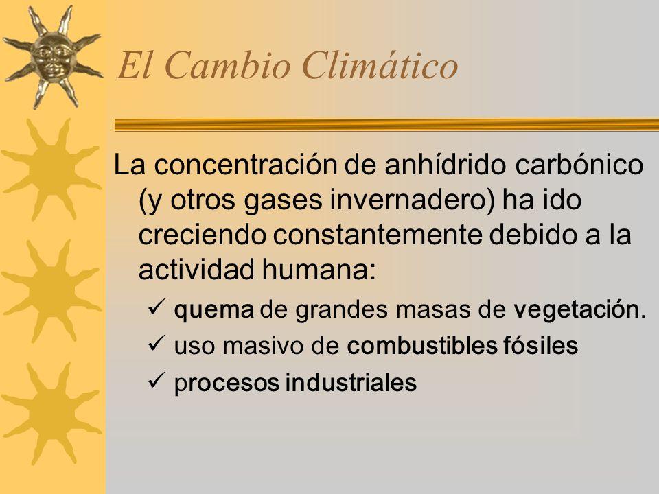 La concentración de anhídrido carbónico (y otros gases invernadero) ha ido creciendo constantemente debido a la actividad humana: quema de grandes masas de vegetación.