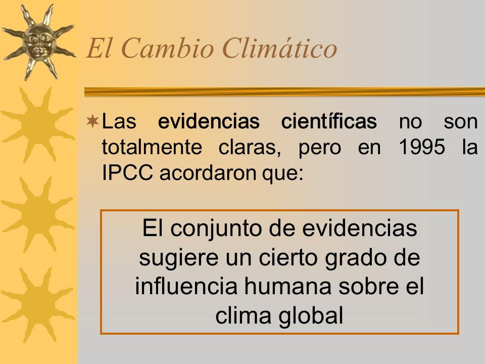 Las evidencias científicas no son totalmente claras, pero en 1995 la IPCC acordaron que: El conjunto de evidencias sugiere un cierto grado de influencia humana sobre el clima global