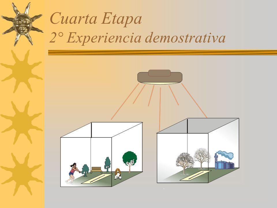 Cuarta Etapa 2° Experiencia demostrativa