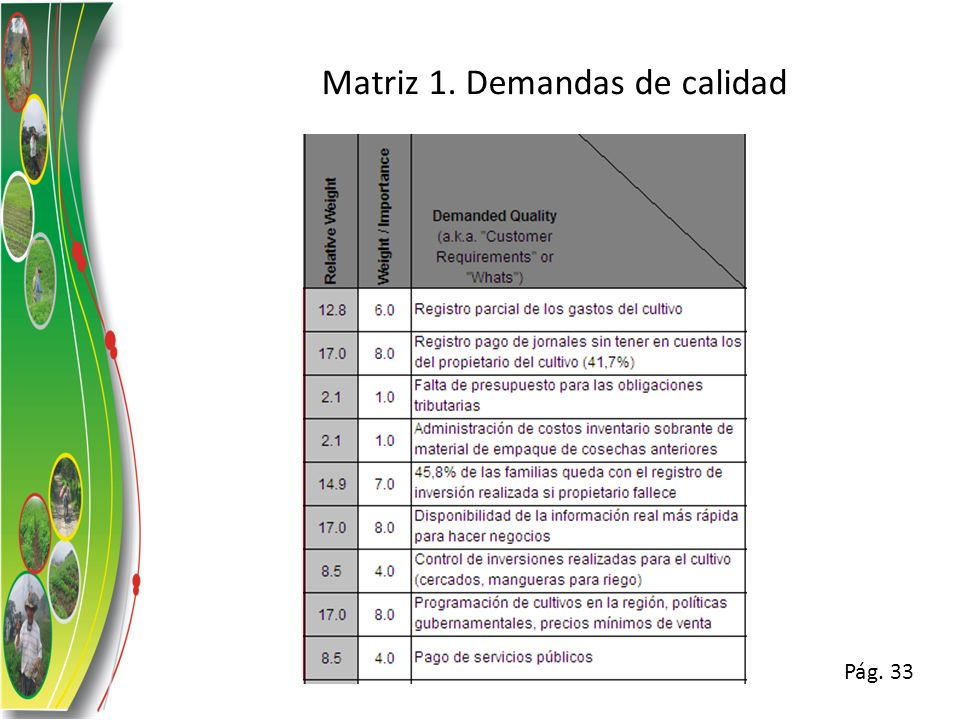 Matriz 1. Demandas de calidad Pág. 33