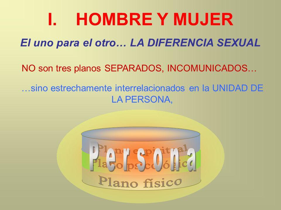 I.HOMBRE Y MUJER El uno para el otro… LA DIFERENCIA SEXUAL NO son tres planos SEPARADOS, INCOMUNICADOS… …sino estrechamente interrelacionados en la UN